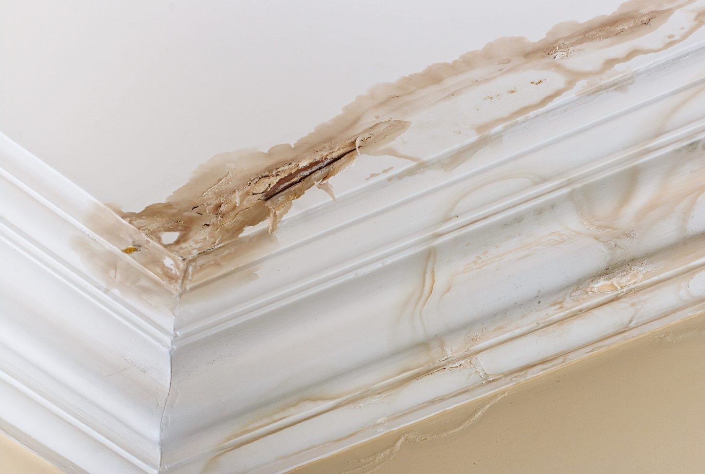6 Early Signs of Water Damage That You Should Never Ignore